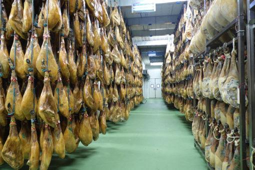 Proceso de curación de jamones en Bodega